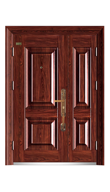 Back Entry Doors for Houses-GS-8113 DOUBLE