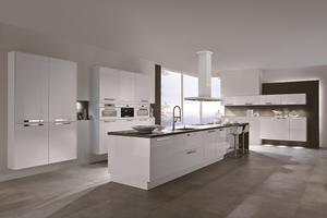 Contemporary kitchen cabinets with a low price,provide a range of kitchen