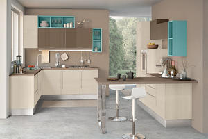 house kitchen with a low price,provide a range of customized kitchen.