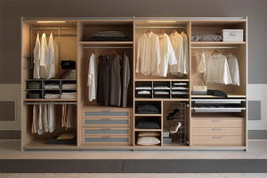 modern walk-in closet, wardrobe wholesale, wardrobe customization