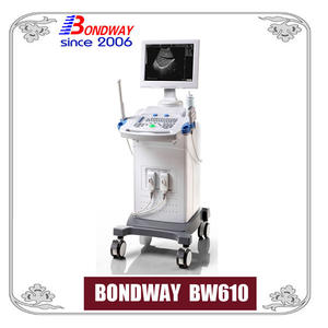 Digital Diagnostic Ultrasound Imaging System
