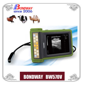 Ultrasound Scan For Equine, Bovine, Cattle, Llama