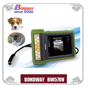 Digital Veterinary Ultrasound For Companion Animal