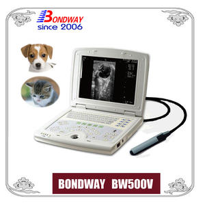 Digital LAPTOP Ultrasound Scan For Small Animals