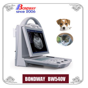 digital ultrasound scan for small animals, cat, dog, rabbit, canine, feline
