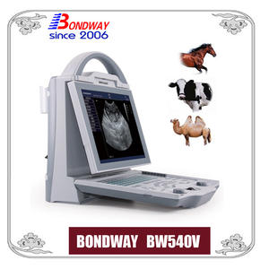 Equine Ultrasound, Cattle Ultrasound, Veterinary Ultrasound, Easiscan