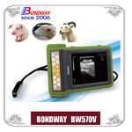 Digital Veterinary Ultrasound Scanner-ultrasound for swine,ovine,goat, alpacca
