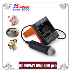 Vet ultrasound for swine, ovine, goat, alpacca, Easiscan, reproscan