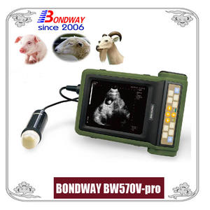 ultrasound for pigs, pork, sheep, goat, and other farm animals, vet ultrasonic