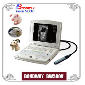 vet ultrasound scan for pig, swine, sheep, goat, veterinary ultrasonic machine