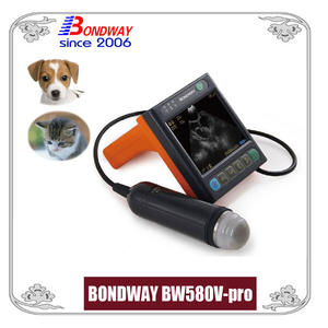 Digital Veterinary Ultrasound For Pets, Companion Animals Or Small Animals