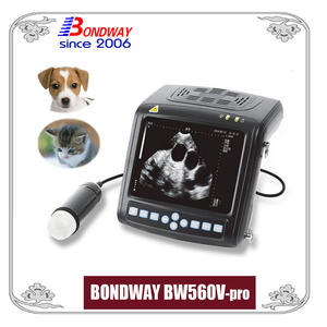 veterinary ultrasound machine for small animals, pets, companion animal