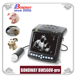 Digital Veterinary Ultrasound Scanner-ultrasound Scan For Swine Ovine Goat Alpacca