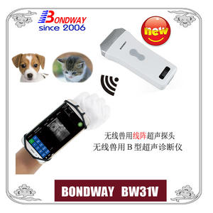 Wireless Veterinary Linear Ultrasonic Transducer, Vet Ultrasound Scanner, Veterinary Ultrasound Scan Machine