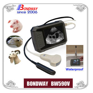 Veterinary ultrasound scan for swine, ovine,goat, alpacca, vet ultrasound