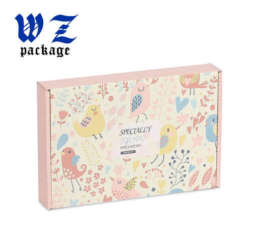 Custom Printed Mail Carton Clothing Packaging Shipping Corrugated Box