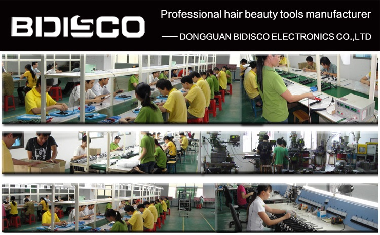 Dual votlage PTC heater OEM custom private label wholesale electric hair straightening brush