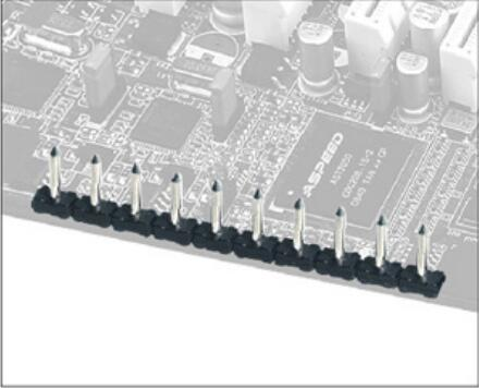 LP332J-5.00 Multi Pin Connector