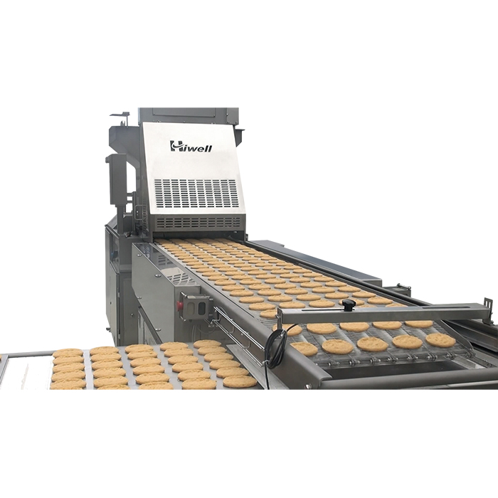 Automatic Tray Loading Machine Production Line