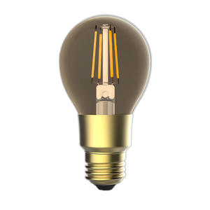 Intelligent Led Bulb