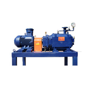 China Water Ring Vacuum Unit and Gas Cooled Roots Vacuum Pump Exporters