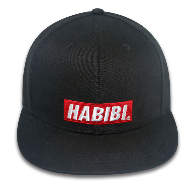 Embroidered snapback hats cotton snapback wholesale