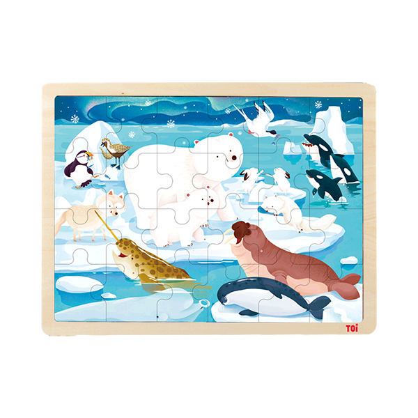 TOI Classic Puzzle Artic Animal Intelligent Education Toy Wood Puzzles For Children Aged 3+