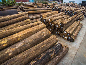 Customize Teak Log wholesalers