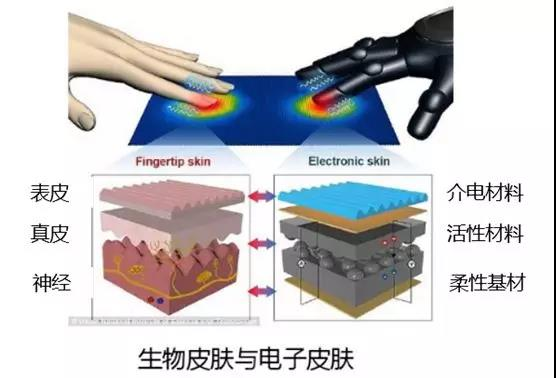 An important application of flexible electronics: electronic skin