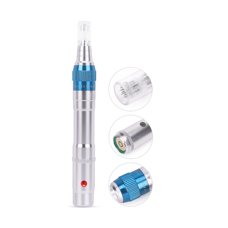 SC548 Portable micro needle electric derma pen with 3 battery