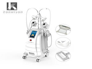 JF291 Cryolipolysis Slimming Machine