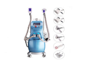CE/FDA certificated cryolipolysis machine for Spa&salon use manufacturer