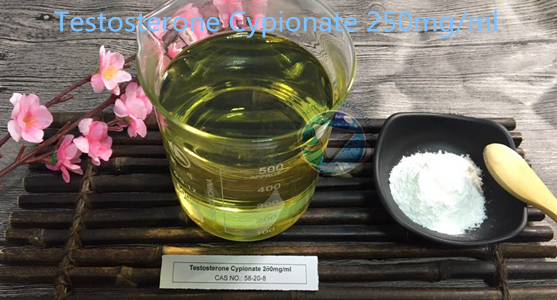 How to make 250mg/ml Injectable Testosterone Cypionate oils?