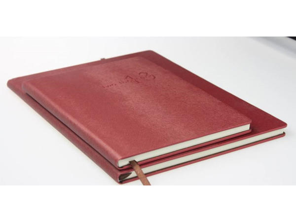 Cor da listra do esquilo pérola PU Softcover Waterproof Stone Notebook