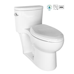 Comfort Height Water Sense One Piece Elongated Toilet