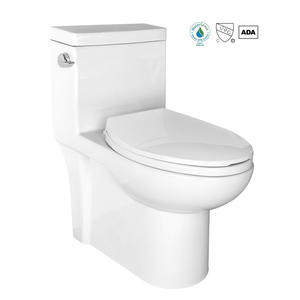 ODM Elongated One Piece Bathroom Toilet Factory