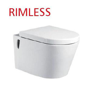 Rimless White One Piece Toilet