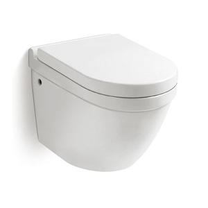 Ceramic Wall Mounted Toilet Bowl