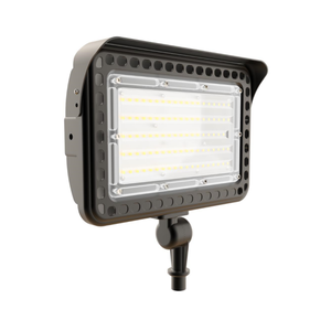 FL20 LED Flood Light