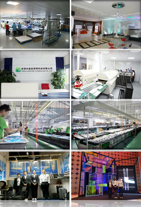 Shenzhen Tonya Lighting Technology Co., Ltd