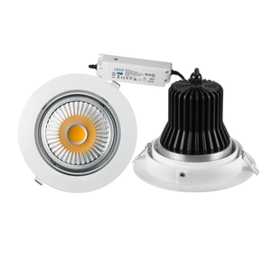 4-Way Rotatable LED Down Light