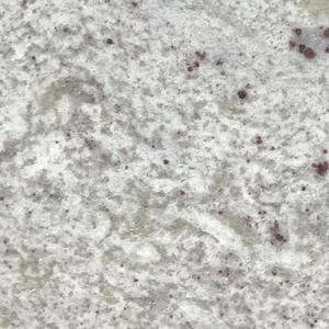 High Quality Kitchen Granite Countertop Supplier-G028