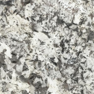 High Quality Granite Overlay Countertops Supplier-G029