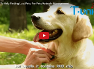 RFID Pet Tags To Help Finding Lost Pets |Xinyetong