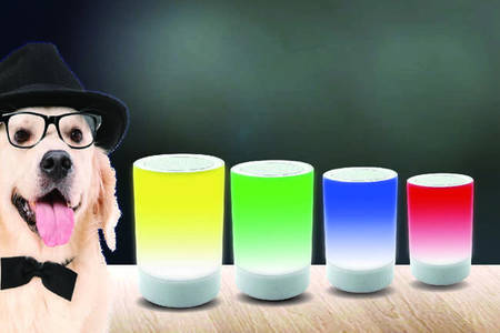 Handle Design LED  Wireless Mini Speaker