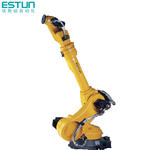China made top one brand ESTUN robot in good price