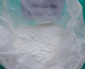 Test Powder Testosterone Isocaproate Anabolic Steroids