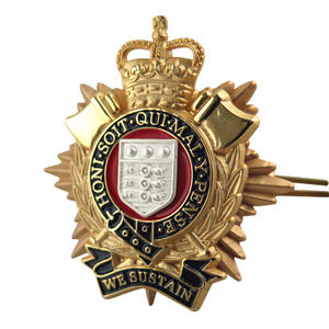 Professional to make Military badges & Army Insignia & Police pin badges