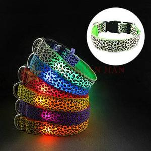 Fashionable LED dog collar with flashing lights blinking in the darkness
