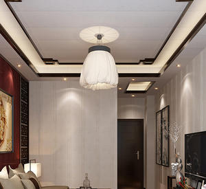 Suspended Ceiling8